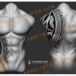 storm3d-chest-and-rib-tattoo-designs-for-sale