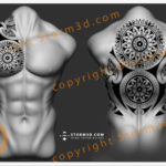tribal-mandala-chestpiece-full-upperback-tattoos